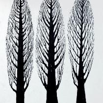 Hoge Bomen 5