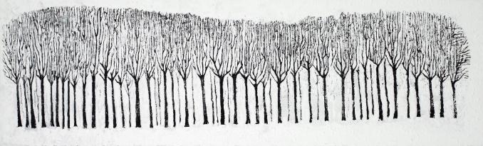 Kale Bomen 2